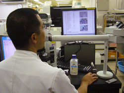 数値や画像だけでなく、染色体やフローサイトメトリーなどの様々な検査結果をスキャンして取り込むこともできる